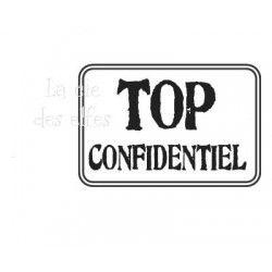 TOP CONFIDENTIEL nm