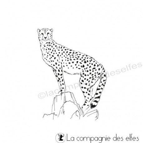 carte exotique 3/3 programmé 31 05 Tampon-le-guepard