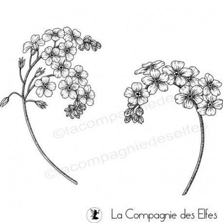 Acheter tampon caoutchouc fleurs phlox