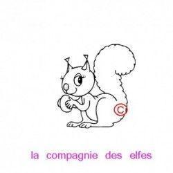 tampon écureuil - noisette - non monté