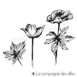 Acheter tampon caoutchouc anémone | anemone stamp