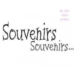 Souvenirs Souvenirs tampon nm