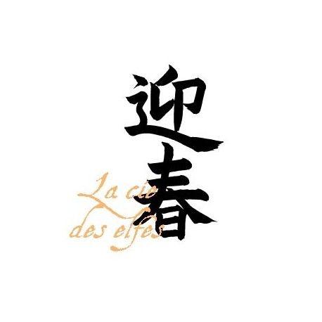 Motif chinois NOUVEL AN tampon nm