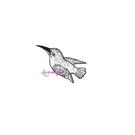 colibri tampon nm