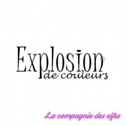 Explosion de couleurs - tampon nm