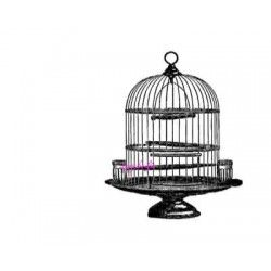 cage oiseaux grand modèle tampon nm