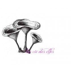 bouquet de champignons des bois tampon nm