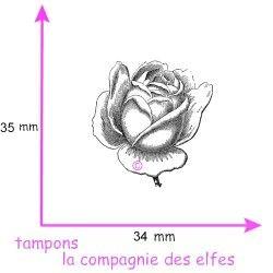 bouton de rose -tampon botanique nm