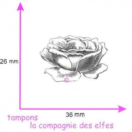tampon rose