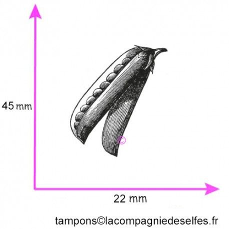 Tampon petit pois | achat tampon légume