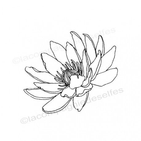 lily water stamp | seerose stempelkissen
