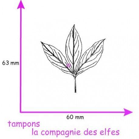 carte thème libre 1/3 Tampon-feuille-pivoine-pm-non-monte