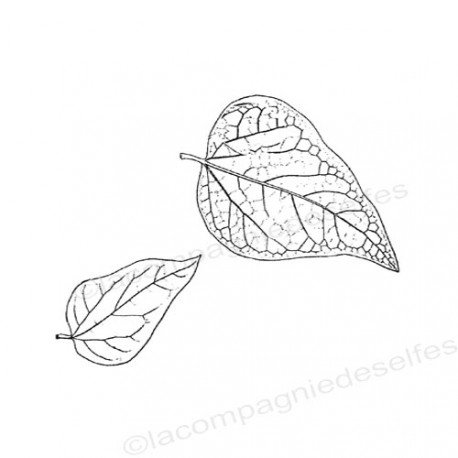 tampon feuille scrapbooking | tampon botanique feuille | leaf stamp | leaves stamp