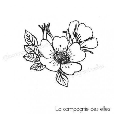 SPECIAL BEBE DE SANDRINE VACHON Bouquet-d-eglantine-tampon-nm