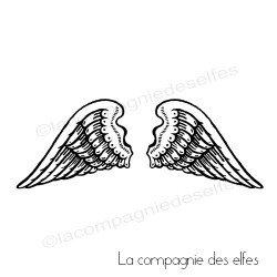 Des z'ailes d'anges encore