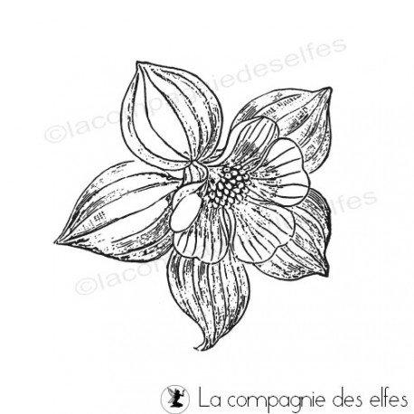 tampon encreur fleur | tampon botanique | tampon scrap fleur