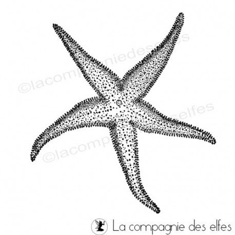 tampon étoile mer | achat tampon mer
