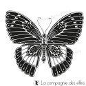 tampon papillon sublime- nm