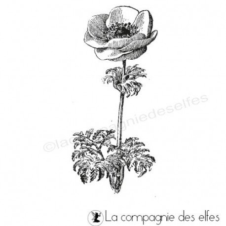 tampon encreur anémone | tampon fleur anémone