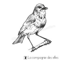 bird rubber stamp | tampon oiseau jardin | tampon scrapbooking oiseau