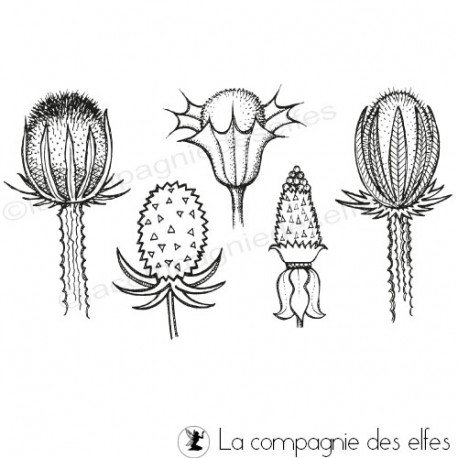 thistle stamp | cardon stamp | cardo sello de goma | distel stempel