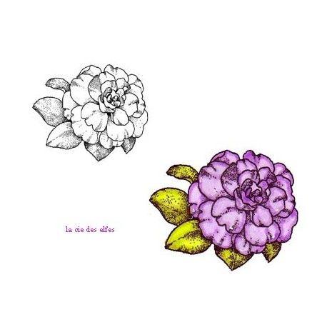 carte et motifs en 3D 1/3 Camelia-gm-fleur-tampon-nm