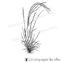 graminées herbe tampon nm