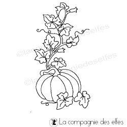 pumpkin stamp | tampon potiron | tampon citrouille