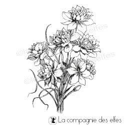 bouquet de jonquilles tampon nm