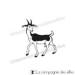 tampon chèvre - non monté