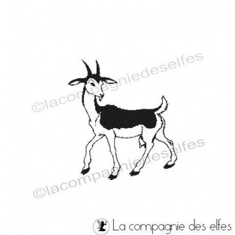 Acheter tampon chèvre