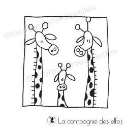 couple et bébé girafes TAMPON nm